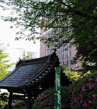 日大豊山高校の説明会